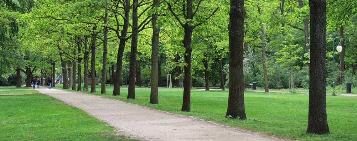 Astoria Park - AA Real Estate