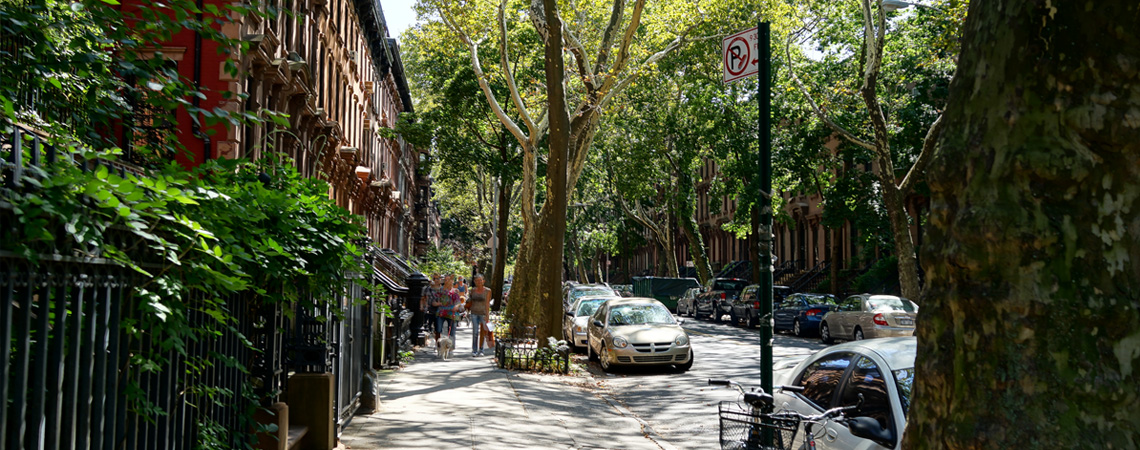 Moving to Fort Greene